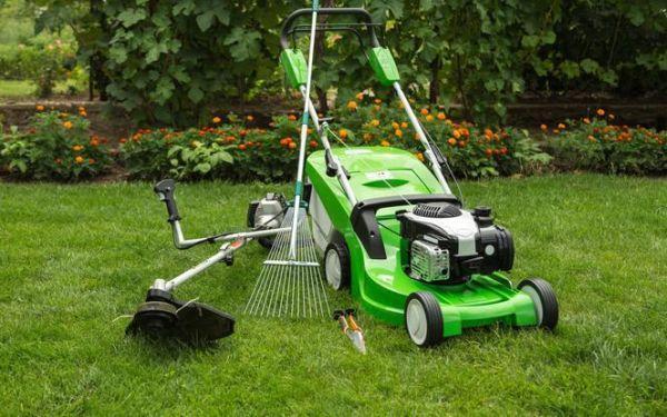 Najważniejsze narzędzia do pielęgnacji trawnika w ogrodzie
